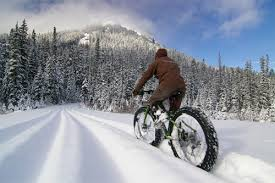 Fatbike rentals and trails at Apex Mountain Resort, courtesy of Freedom Bike Shop, Penticton.
